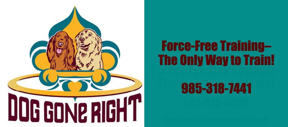 Dog Gone Right, L.L.C. Force-free Dog Training
